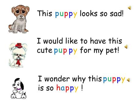 This looks so sad! I would like to have this cute for my pet! I wonder why this is so ! puppy puppy puppy happy.