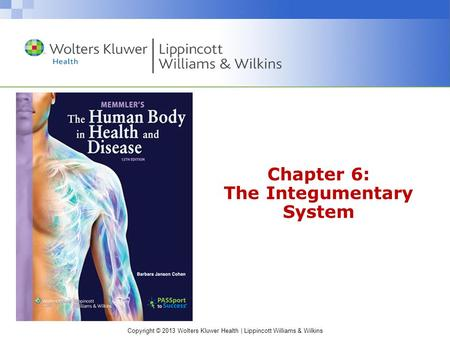 Copyright © 2013 Wolters Kluwer Health | Lippincott Williams & Wilkins Chapter 6: The Integumentary System.