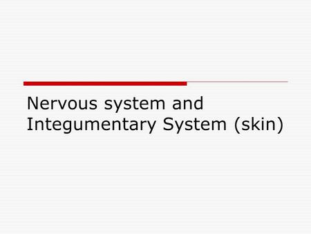 Nervous system and Integumentary System (skin)