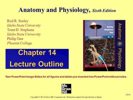 14-1 Anatomy and Physiology, Sixth Edition Rod R. Seeley Idaho State University Trent D. Stephens Idaho State University Philip Tate Phoenix College Copyright.