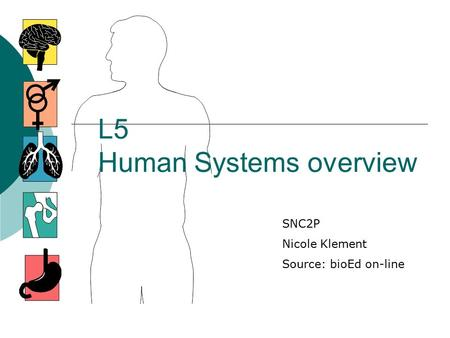 L5 Human Systems overview