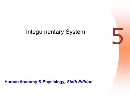 Human Anatomy & Physiology, Sixth Edition 5 Integumentary System.