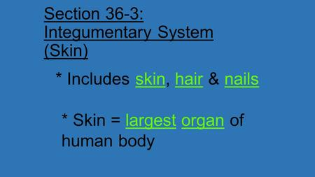 Section 36-3: Integumentary System (Skin) * Includes skin, hair & nails * Skin = largest organ of human body.