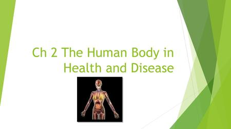 Ch 2 The Human Body in Health and Disease. Overview  Anatomical Reference Systems: Descriptive terms used to describe the location of the body planes,