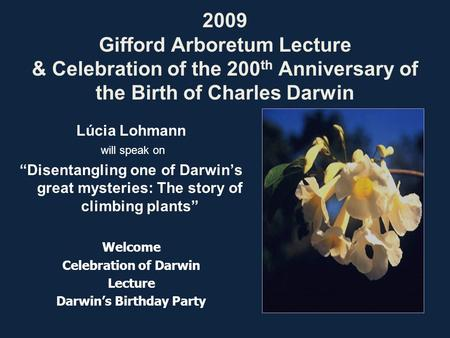 "2009 Gifford Arboretum Lecture & Celebration of the 200 th Anniversary of the Birth of Charles Darwin Lúcia Lohmann will speak on ""Disentangling one of."