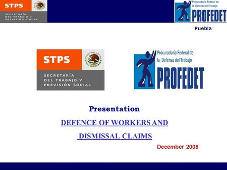 Puebla Presentation DEFENCE OF WORKERS AND DISMISSAL CLAIMS December 2008.