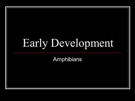 Early Development Amphibians. Cleavage in a frog Describe the progression of events.