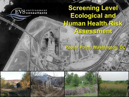 Screening Level Ecological and Human Health Risk Assessment Poplar Point, Washington, DC.