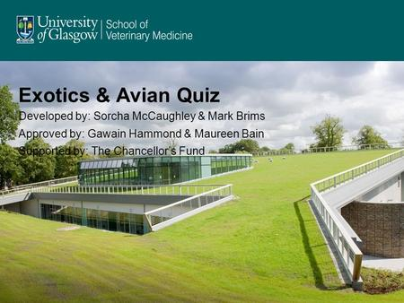 Exotics & Avian Quiz Developed by: Sorcha McCaughley & Mark Brims Approved by: Gawain Hammond & Maureen Bain Supported by: The Chancellor's Fund.