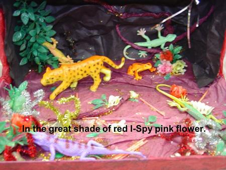 In the great shade of red I-Spy pink flower.. Congratulation!!! You found the pink flower! There are a lot of plants in the rainforest. Most of the plants.