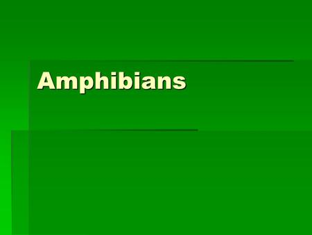 Amphibians Amphibians  Vertebrate (backbone)  Ectothermic (cold- blooded)  Must absorb heat from external sources  When environment becomes too hot.