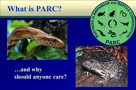 "What is PARC? …and why should anyone care?. ""To conserve amphibians, reptiles, and their habitats as integral parts of our ecosystem and culture through."