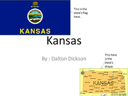 By : Dalton Dickson Kansas This is the state's flag here. This here is the state's shape.