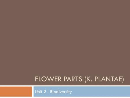 FLOWER PARTS (K. PLANTAE) Unit 2 - Biodiversity. Angiosperms  Have unique reproductive organs called flowers  Flowers contain ovaries, which surround.