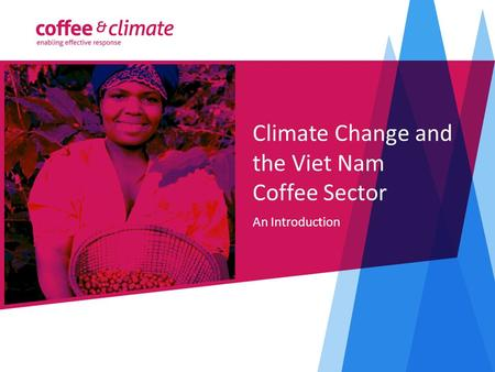 Climate Change and the Viet Nam Coffee Sector An Introduction.