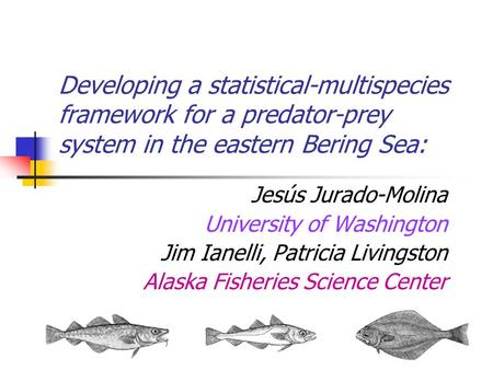 Developing a statistical-multispecies framework for a predator-prey system in the eastern Bering Sea: Jesús Jurado-Molina University of Washington Jim.