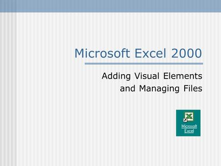 Microsoft Excel 2000 Adding Visual Elements and Managing Files.