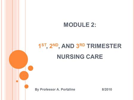 MODULE 2: 1 ST, 2 ND, AND 3 RD TRIMESTER NURSING CARE By Professor A. Portzline 8/2010.