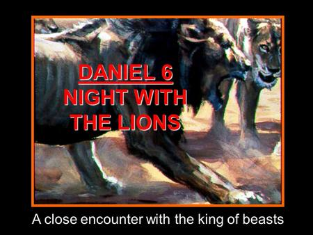 DANIEL 6 NIGHT WITH THE LIONS A close encounter with the king of beasts.
