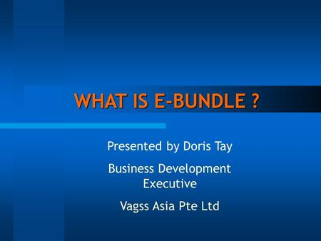 WHAT IS E-BUNDLE ? WHAT IS E-BUNDLE ? Presented by Doris Tay Business Development Executive Vagss Asia Pte Ltd.