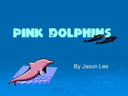 By Jason Lee. What Are Pink Dolphins? Pink dolphins (Sousa chinensis 中華白海豚 ) also known as Chinese White Dolphins or Indo-Pacific Humpback Dolphins are.