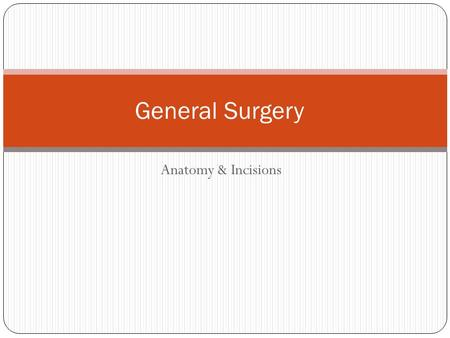 Anatomy & Incisions General Surgery. Incisions A variety of incisions are used The type chosen is dependent on a number of factors Access desired Procedure.