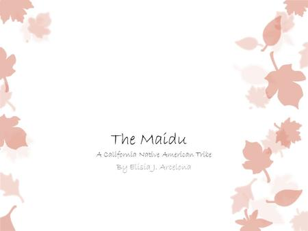 The Maidu A California Native American Tribe By Elisia J. Arcelona.
