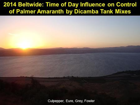 2014 Beltwide: Time of Day Influence on Control of Palmer Amaranth by Dicamba Tank Mixes Culpepper, Eure, Grey, Fowler.
