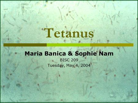 Tetanus Maria Banica & Sophie Nam BISC 209 Tuesday, May 4, 2004.