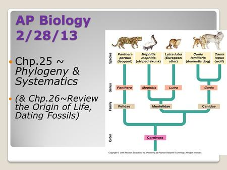 AP Biology 2/28/13 Chp.25 ~ Phylogeny & Systematics (& Chp.26~Review the Origin of Life, Dating Fossils)