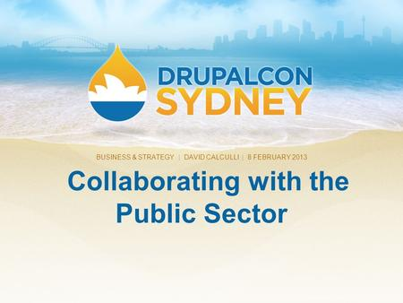 Collaborating with the Public Sector BUSINESS & STRATEGY | DAVID CALCULLI | 8 FEBRUARY 2013.