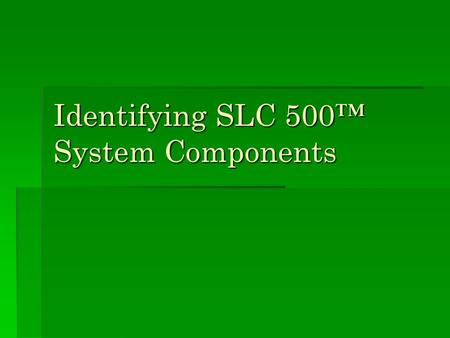 Identifying SLC 500™ System Components. SLC 500 System Options  The SLC 500 line of processors comprises both fixed and modular processor styles.: