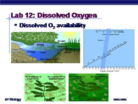 Lab 12: Dissolved Oxygen Description –measure primary productivity by measuring O 2 production –factors that affect amount of dissolved O 2 temperature.