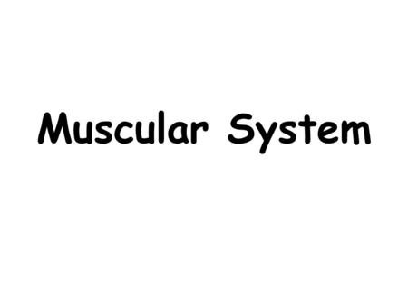 Muscular System. Did you know you have more than 600 muscles in your body? They help you do almost everything — from pumping blood throughout your body.