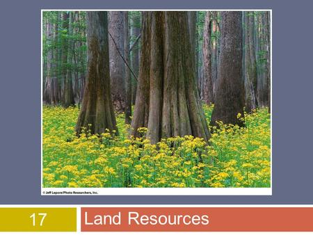 17 Land Resources. Land Use – World Wide  One of the best ways to protect endangered & threated species  restore natural areas  World wide humans use.