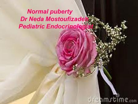 Normal puberty Dr Neda Mostoufizadeh Pediatric Endocrinologist.