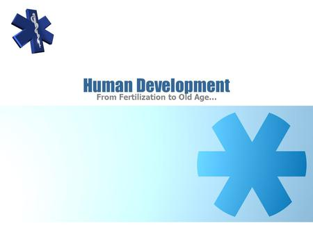 Human Development From Fertilization to Old Age….