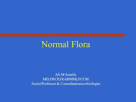 Normal Flora Ali M Somily MD,FRCP,D(ABMM),FCCM Assist Professor & Consultant microbiologist.