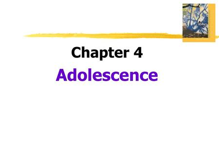 Chapter 4 Adolescence.  Adolescence  the transition period from childhood to adulthood  extending from puberty to independence  Puberty  the period.