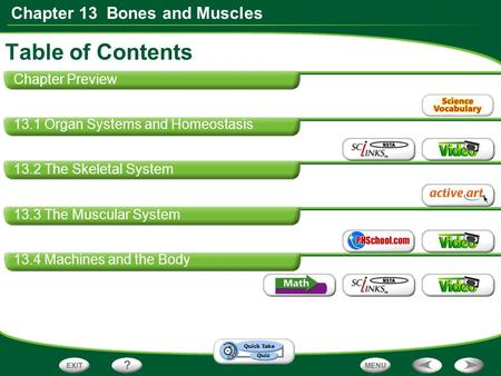Chapter 13 Bones and Muscles Table of Contents Chapter Preview 13.1 Organ Systems and Homeostasis 13.2 The Skeletal System 13.3 The Muscular System 13.4.