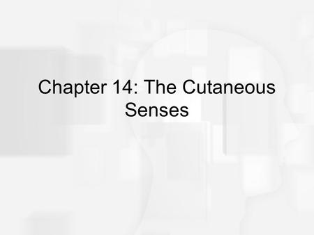 Chapter 14: The Cutaneous Senses. Overview of Questions Are there specialized receptors in the skin for sensing different tactile qualities? What is the.