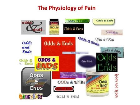 The Physiology of Pain. Pain Receptors bare sensory nerve endings innervate all organs and tissues (except the brain) respond to all types of noxious.