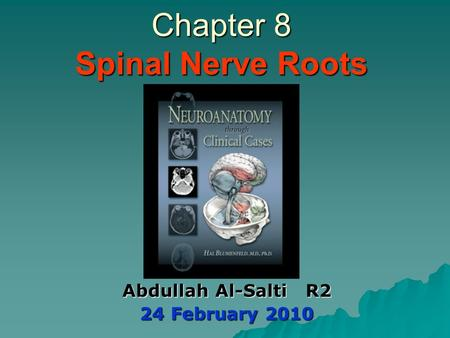 Chapter 8 Spinal Nerve Roots