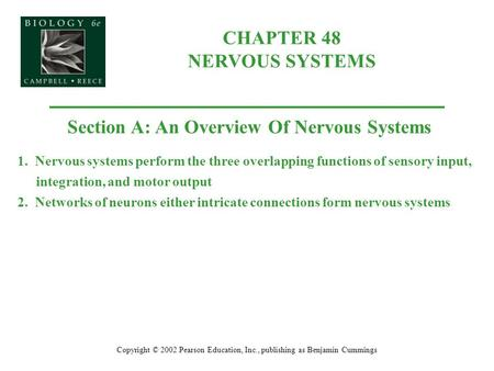 CHAPTER 48 NERVOUS SYSTEMS Copyright © 2002 Pearson Education, Inc., publishing as Benjamin Cummings Section A: An Overview Of Nervous Systems 1. Nervous.