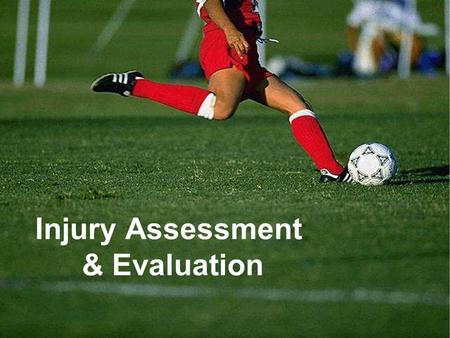 Injury Assessment & Evaluation. Today's topics...  Principles of range of motion testing, neurological testing, and special tests  Functional testing.
