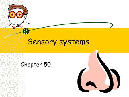 Sensory systems Chapter 50. Five senses Touch Taste Smell Sound Vision.
