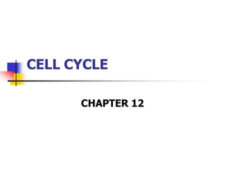 CELL CYCLE CHAPTER 12.