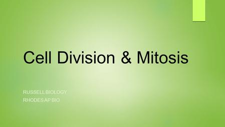 Cell Division & Mitosis RUSSELL BIOLOGY RHODES AP BIO.