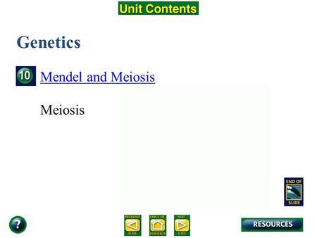 Unit Overview – pages 250-251 Genetics Mendel and Meiosis Meiosis.