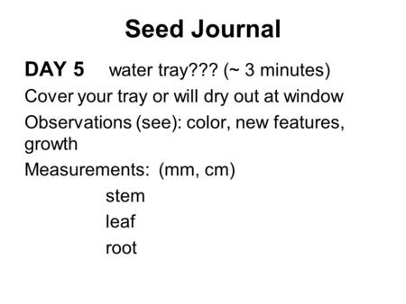 Seed Journal DAY 5 water tray??? (~ 3 minutes) Cover your tray or will dry out at window Observations (see): color, new features, growth Measurements: